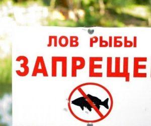 Новый закон не отменяет действие запрета на лов рыбы с причала в Ялте до 28 февраля