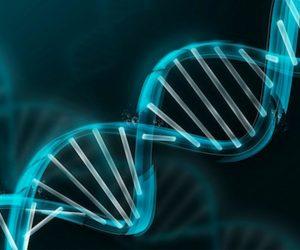 Генетические манипуляции, более чем вдвое увеличивающие продолжительность жизни, приводят к лучшему потомству