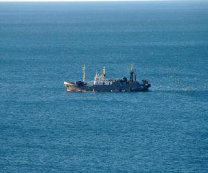 Сейнеры ведут лов рыбы в акватории Ялты законным способом