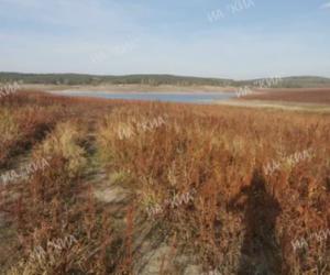 В водохранилищах Крыма осталось около 37 млн кубов воды