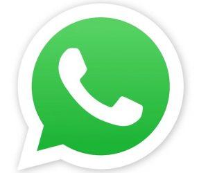 WhatsApp с 1 ноября перестанет работать на старых версиях Android, iOS и KaiOS