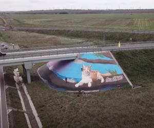 Трассу «Таврида» украсили граффити с котом Мостиком размером с дом