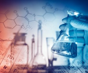 Молодежные лаборатории генетики и морских полярных технологий появятся в крымском НОЦ